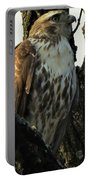 Red Tailed Morning Portable Battery Charger
