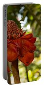 Red Torch Ginger Lily In Hawaii Portable Battery Charger