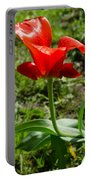 Red Tulip On The Green Background Portable Battery Charger