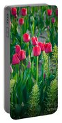 Red Tulips In Skagit Valley Portable Battery Charger