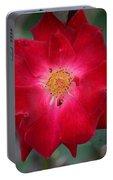Red Velvet 1b Portable Battery Charger