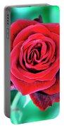 Red Velvet Palm Springs Portable Battery Charger