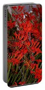 Red Devils Tongue Vine Vertical Portable Battery Charger