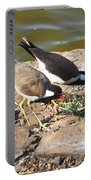 Red-wattled Lapwing Portable Battery Charger