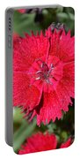 Red Winery Flower Portable Battery Charger