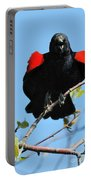 Red Wing Blackbird 1 Portable Battery Charger