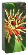 Red Zinnia- Early Bloom Portable Battery Charger