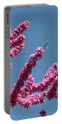 Redbud Against Blue Sky Portable Battery Charger