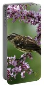 Redbud With Grosbeak Portable Battery Charger