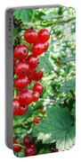 Redcurrant Berries Portable Battery Charger