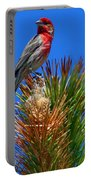 Redheaded Tree Topper Portable Battery Charger