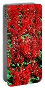 Redlicious Portable Battery Charger
