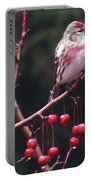 Redpoll On Crabapple Tree Portable Battery Charger