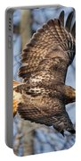 Redtail Hawk Square Portable Battery Charger by Bill Wakeley