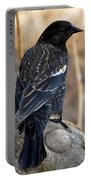 Redwing Blackbird Portable Battery Charger