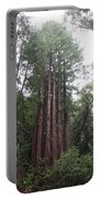 Redwood Fairy Ring Portable Battery Charger