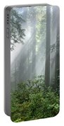 Redwood Forest With Sunbeams Portable Battery Charger