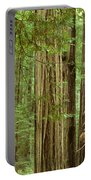 Redwood Grove California Portable Battery Charger