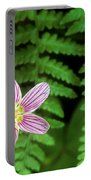 Redwood Sorrel Wildflower Nestled In Ferns Portable Battery Charger