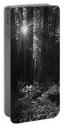 Redwood Sunburst Monochrome Portable Battery Charger