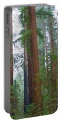 Redwood Trees Portable Battery Charger