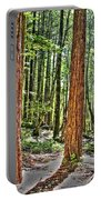 Redwoods 2 Big Basin Portable Battery Charger