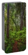 Redwoods 2 Portable Battery Charger