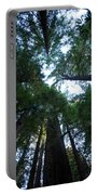 Redwoods II Portable Battery Charger
