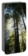 Redwoods IIII Portable Battery Charger