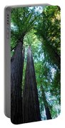 Redwoods IIl Portable Battery Charger