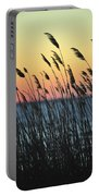 Reeds At Sunset Island Beach State Park Nj Portable Battery Charger