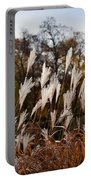 Reeds Highlighted By The Sun Portable Battery Charger