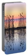 Reeds Reflected In Water At Dusk Ile Portable Battery Charger