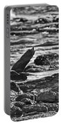 Reef Egret In Flight  Portable Battery Charger