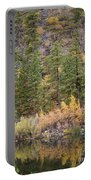 Reflect Autumn Portable Battery Charger
