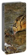 Reflected Eye Woodcock Portable Battery Charger