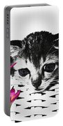 Reflecting Kitten Portable Battery Charger
