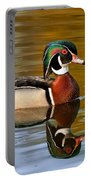 Reflecting Nature's Beauty Portable Battery Charger