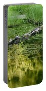 Reflecting Pond Glacier National Park Painted Portable Battery Charger