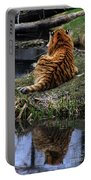 Reflecting Stripes Portable Battery Charger