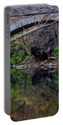 Reflecting While Fishing Portable Battery Charger