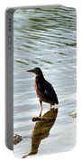 Reflection Of The Green Heron Portable Battery Charger
