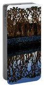 Reflections In First Light Portable Battery Charger