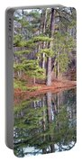 Reflections In The Pines Portable Battery Charger
