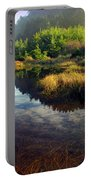 Reflections In The Pond Portable Battery Charger