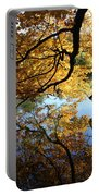 Reflections Portable Battery Charger