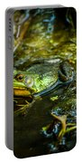 Reflections Of A Bullfrog Portable Battery Charger