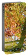 Reflections Of A Colorful Fall 001 Portable Battery Charger