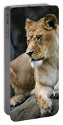 Reflections Of A Lioness Portable Battery Charger