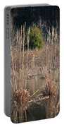 Reflections Of Winter Past 2014 Portable Battery Charger